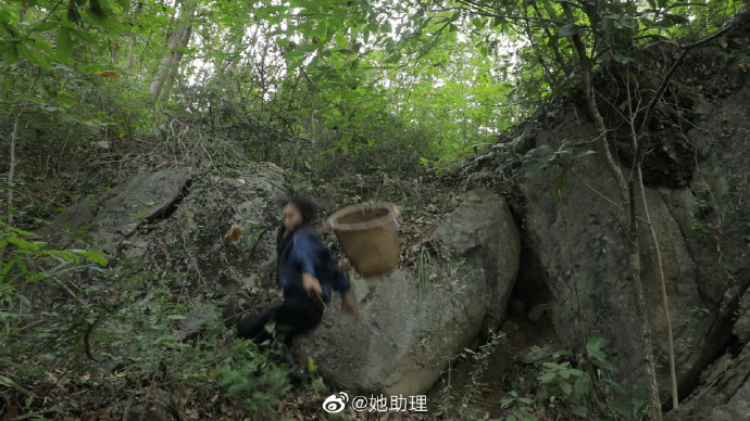 liziqi-falling-off-rock-3
